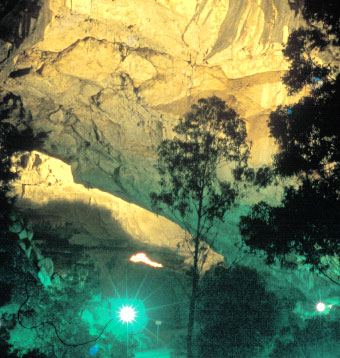 When Was Jenolan Caves Made A Nature Reserve