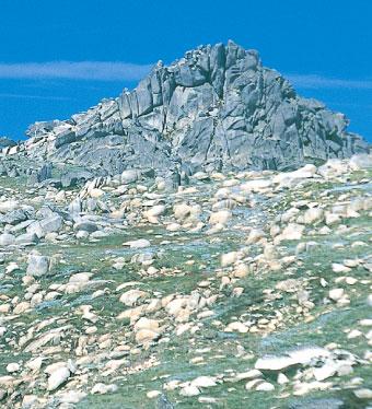 OzBC.net - NSW Backcountry - Mt Kosciuszko