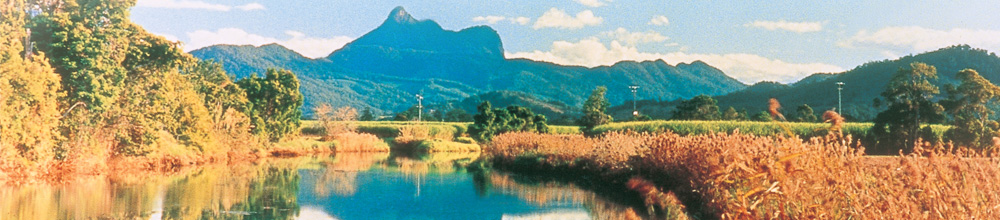 Central core of Wollumbin/Mt Warning. Photo Destination NSW