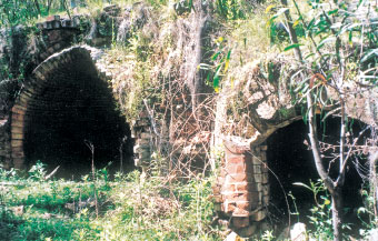 Remains of coke ovens at Newnes